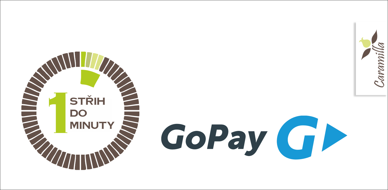 Platba přes GoPay názorně