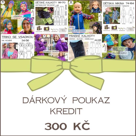 kredit300